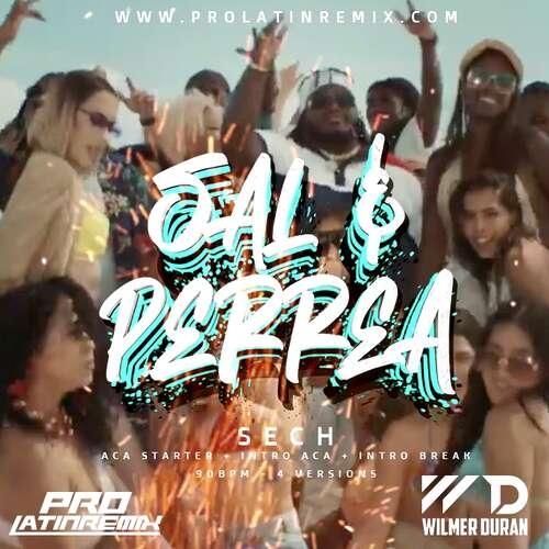 Sal Y Perrea - Sech - DJ Wilmer Duran - Reggaeton Intro Break + Aca Starter + Intro Aca & Outro - 90BPM - 4 Versions