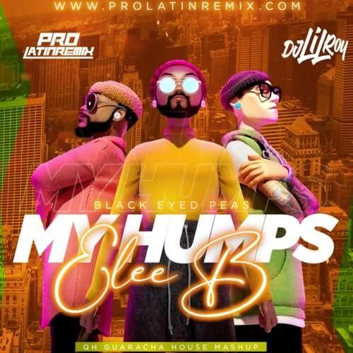 My Humps Vs Elee B - Black Eyed Peas - DJ Lil Roy - QH Guaracha House Mashup - 128BPM