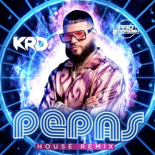 Pepas - Farruko - KRD - House Remix - 130BPM